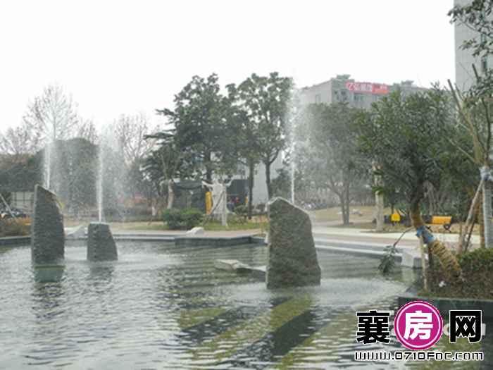 梧桐湾喷泉实景