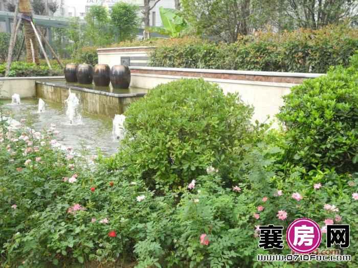 梧桐湾小区喷泉园林实景