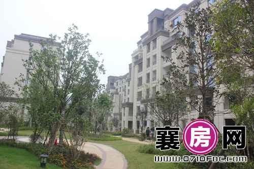 襄阳檀溪公馆社区部分绿化建设实景