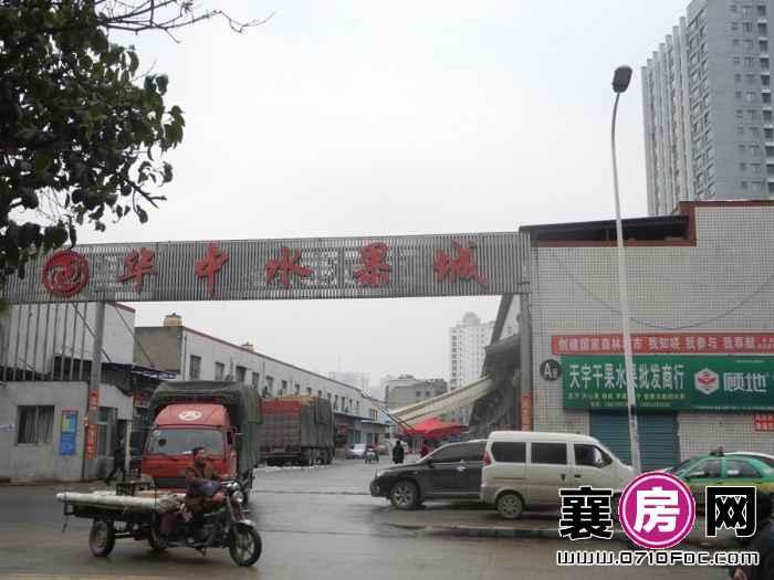 融侨城项目100米内华中水果城