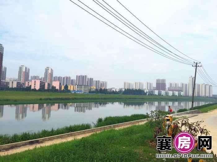 融侨城项目北面小清河