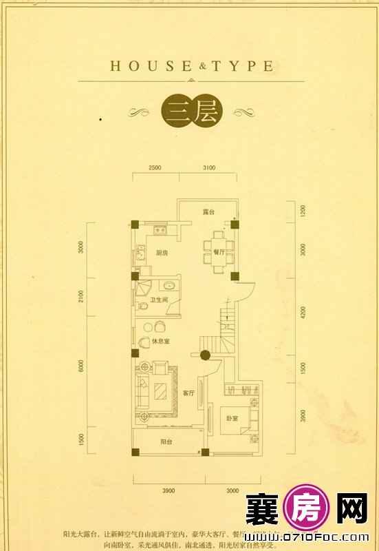 别墅D户型三层