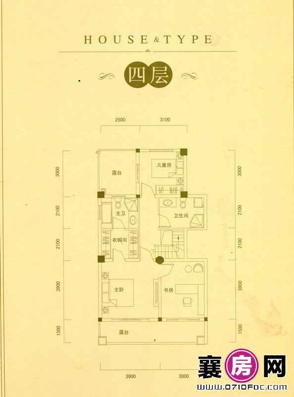 别墅D户型四层
