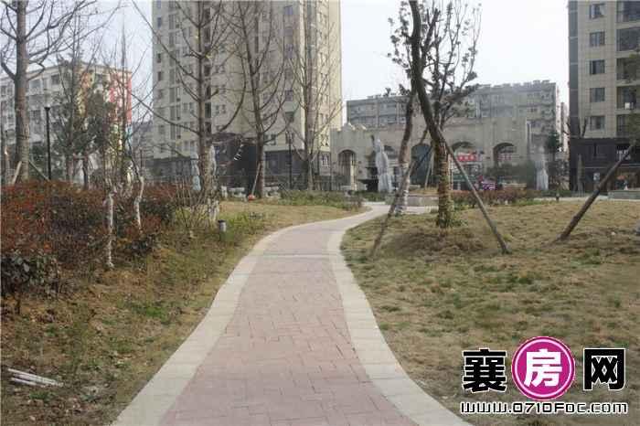 长虹观邸小区实景图(2015-3-13)