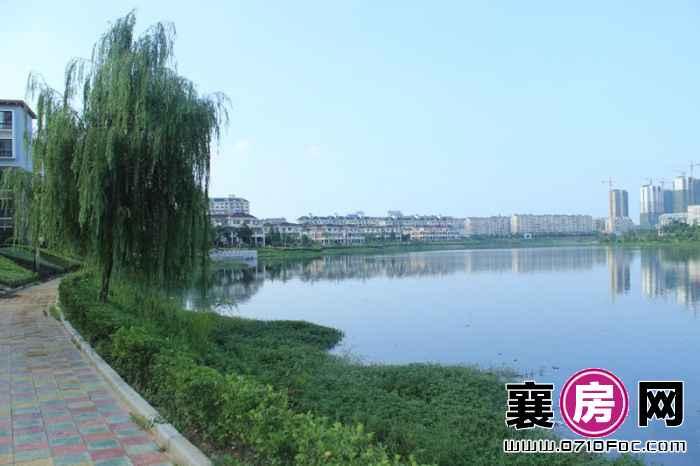 东湖国际花园·望湖实景图