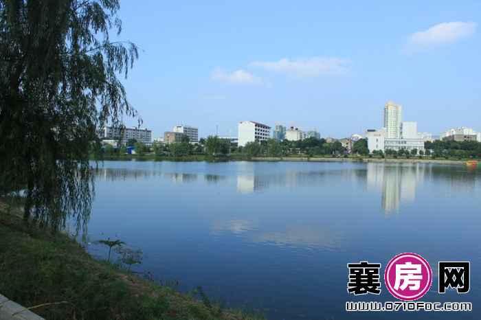 东湖国际花园望湖湖面景色实景(2013-07-01)