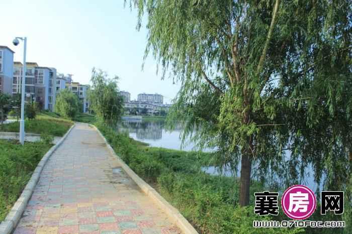 东湖国际花园望湖临湖风景实景(2013-07-01)