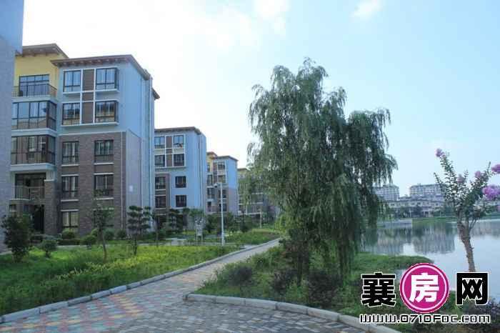 东湖国际花园望湖临湖景色实景(2013-07-01)