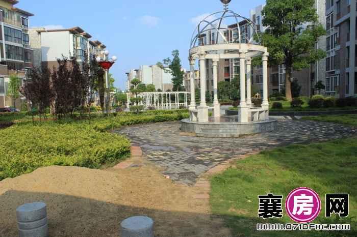东湖国际花园望湖小区景观实景(2013-07-01)