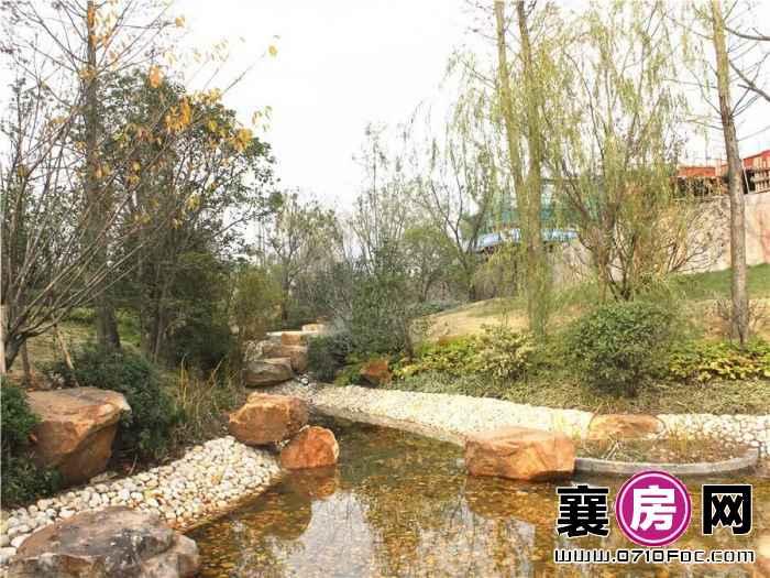 海上五月花园林景观(2015-11-26)