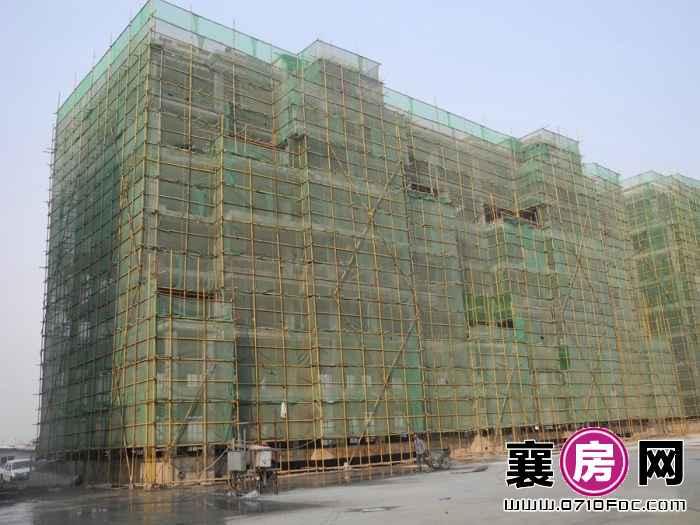 迅邦檀溪公馆9#工期进度(2015-10-20)