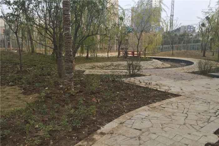 小区园林景观(2015-12-10)