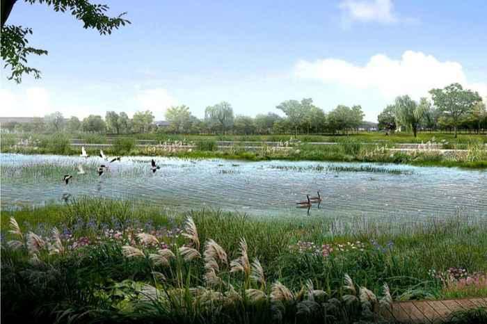 解佩渚生态湿地公园效果图